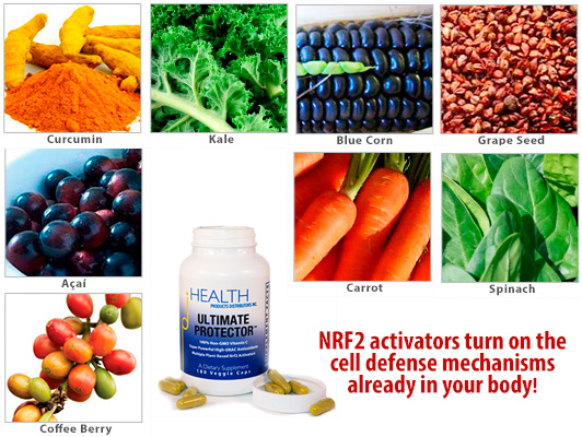 Ultimate Protector NRF2 Activator