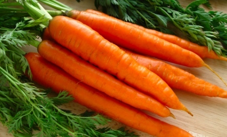 carrots diet Valley Fever