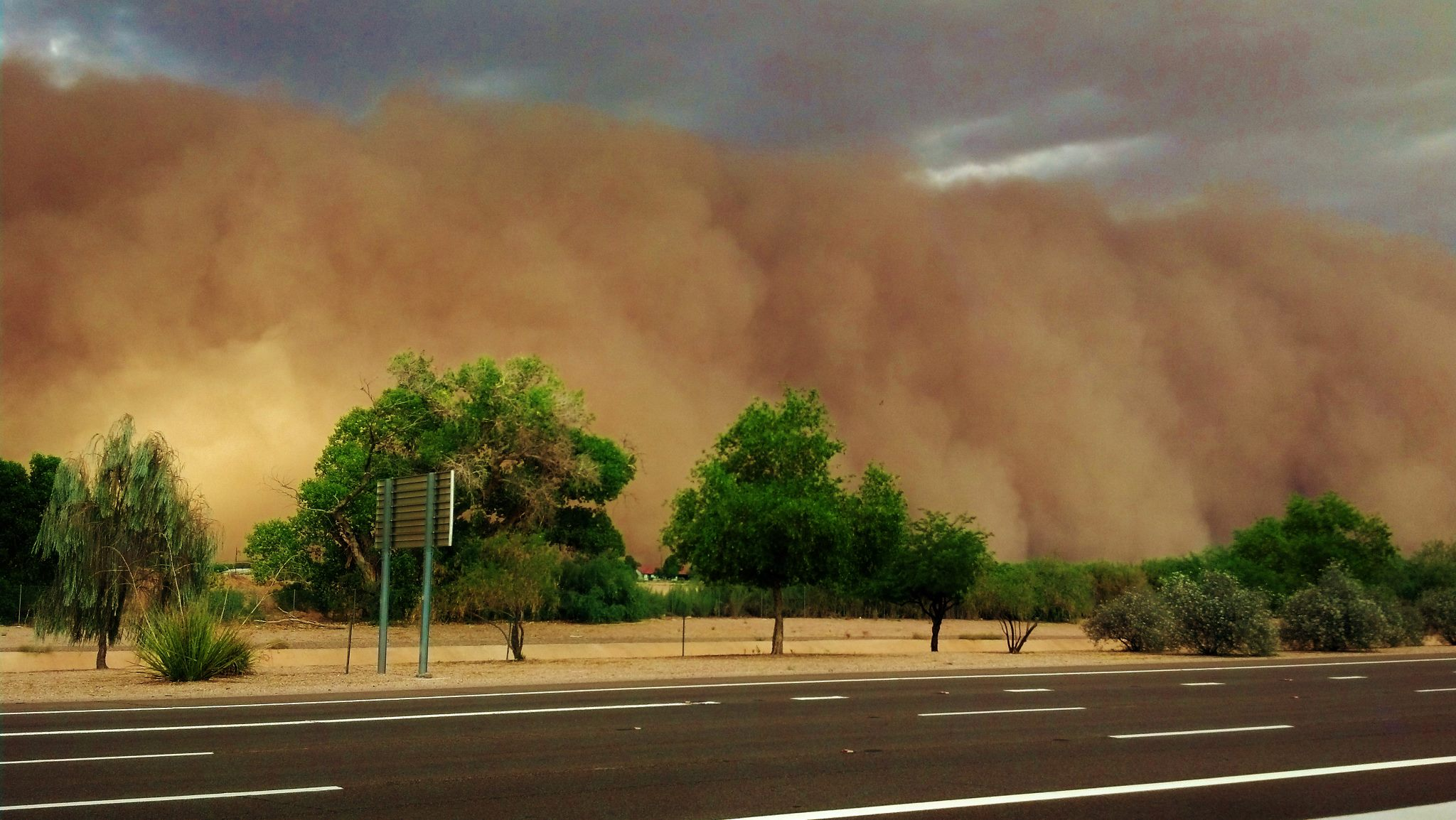 haboob arizona dust storm Valley Fever spores