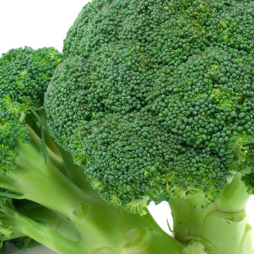 Broccoli nrf2 activator ultimate protector ingredient ARE