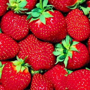 Strawberry strawberries