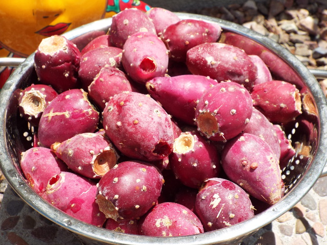 prickly pear fruits smoothie amaranth juice rejuvenate superfoods