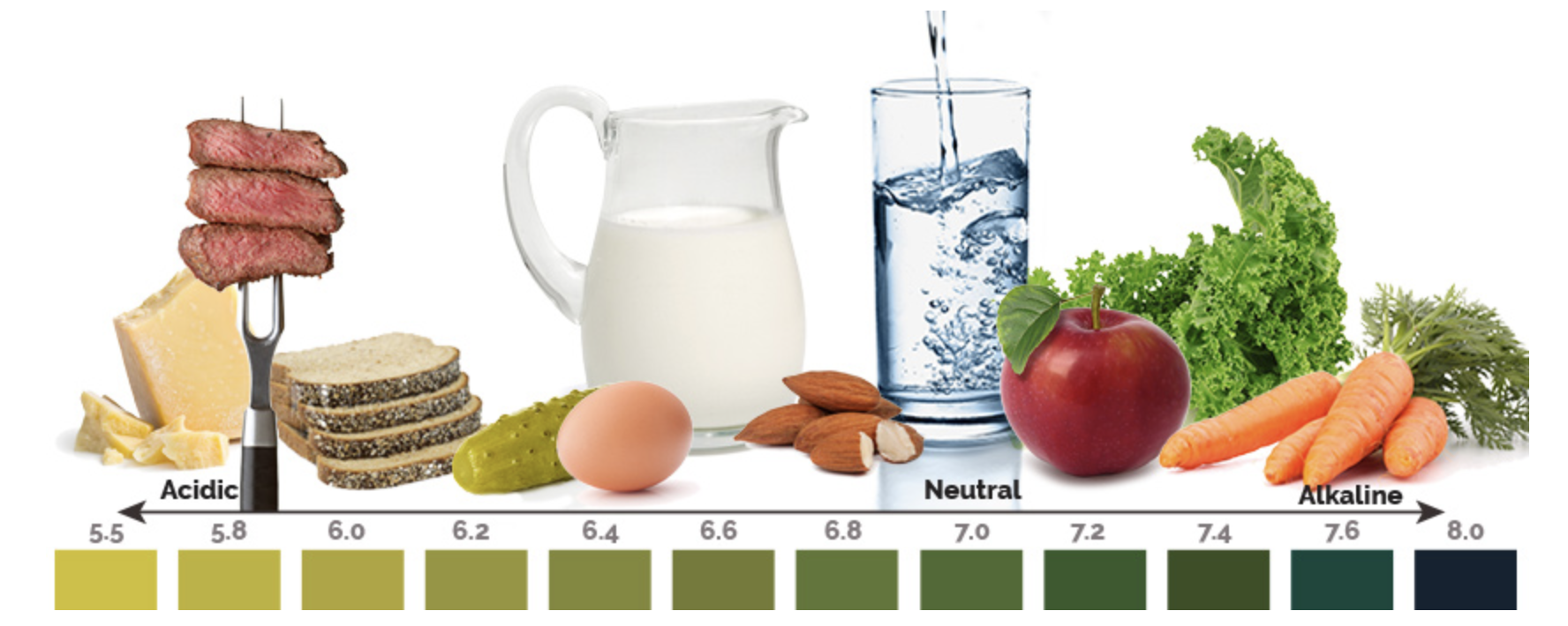 foods can alkalinize